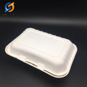 600ml jetable Eco Friendly biodégradable Food Box