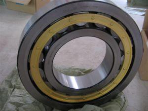 Rodamientos de rodillos cilíndricos con Cage Nu338m