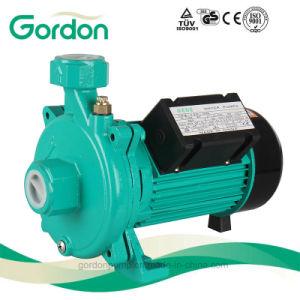 Pompa centrifuga autoadescante elettrica nazionale del collegare di rame con la ventola d'ottone