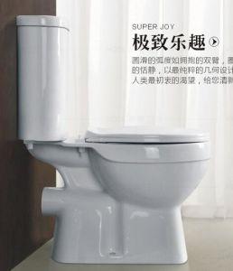 Помойте вниз 2 части туалета Wc с конкурентоспособной ценой