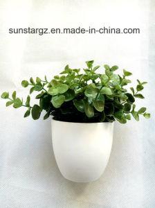 PE Эвкалипт искусственных растительных покрытием для дома (49736)