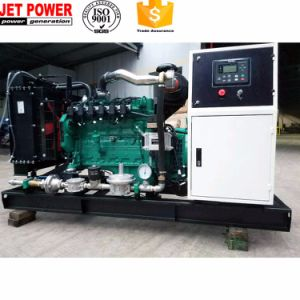 100kVA générateur de gaz de Biogaz de type ouvert générateur de gaz naturel/GPL défini
