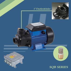 210W-750W Vortex solaire BLDC, pompe de gavage de pompe à eau, pompe Self-Priming avec contrôleur MPPT