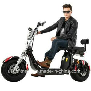 Elektrischer Motorrad-fetter Gummireifen-elektrisches Gebirgsfahrrad mit EWG