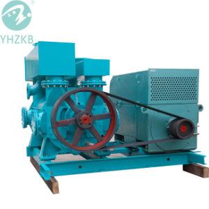 Wasser/flüssige Ring-Vakuumpumpe für Papiermühle