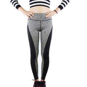 L'OEM assiste la forma fisica pareggiante delle donne dei pantaloni di yoga del prodotto degli abiti sportivi