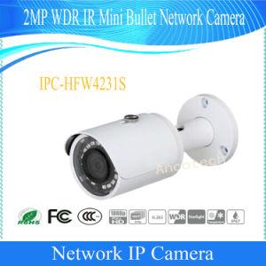 IP van het Netwerk van de Kogel van Dahua 2MP WDR IRL MiniCamera (ipc-HFW4231S)