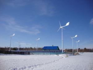 Ane Professional el viento la energía solar Micro sistema de rejilla para el pueblo, la granja