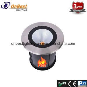 Nueva luz LED 30W COB Jardín de luz LED en IP67