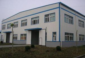 Eficiente Estructura de acero de construcción con certificado CE prefabricados