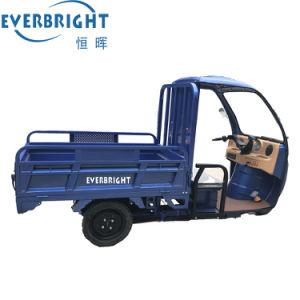 販売の電気貨物1000W 400kgローディングの三輪車
