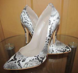 Nuevo estilo de tacón de moda Zapatos de Vestir