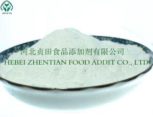 Sterk Remmend Effect van Corruptie van de Vervaardiging van de Additieven voor levensmiddelen van de Gist van de Vorm van Bacteriën