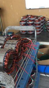 12V 24V 300W China Lieferanten-kleine Wind-Turbine