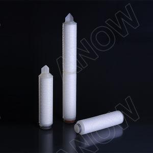 Alta qualità cartuccia di filtro standard dalla membrana dai 0.22 micron PTFE-USA