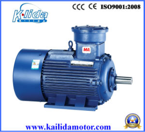 El motor, Motor Explosion-Proof, con los certificados ISO9001