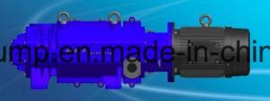 Aspirador Industrial Freeze-Drying elétrico da bomba de parafuso seco