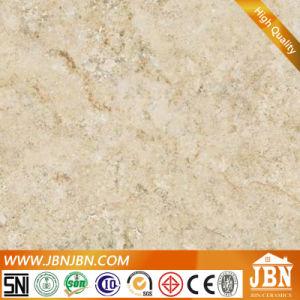 De porselein Opgepoetste Tegel van de Vloer van het Exemplaar Marmer Verglaasde (JM6948D1)