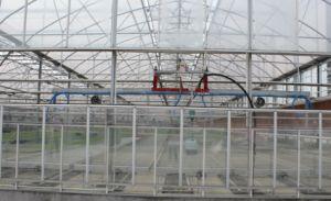 高品質の熱い販売の温室によって電流を通される管