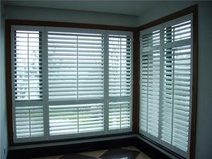 PVC PS/aveugle de l'obturateur/Window-Shade Ligne d'Extrusion