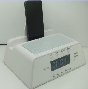 Lautsprecher mit Radiofunktion der DUA-Warnungs-FM für iPad/iPhone5/6
