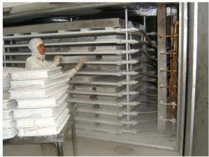 Plaque de contact de haute qualité au congélateur pendant la congélation des aliments