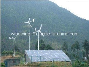 De Ce Goedgekeurde 10kw Horizontale Turbogenerator 10m/S van de Wind