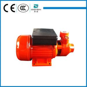 QB60 Vortex Water Pump für Trinkwasser