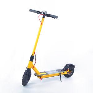 350W recharge intelligent de lumière LED Scooter électrique pliant