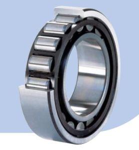 Rolamento de roletes cilíndricos/ZWZ (NU3076M)