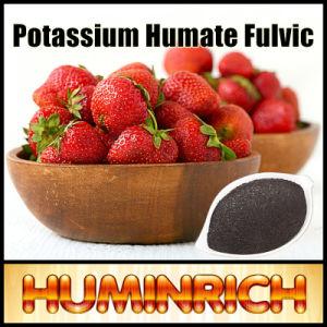 Huminrich Pflanzenwachstum-Förderer-SuperkaliumHumate organisches Düngemittel
