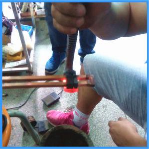Macchina termica di induzione di trattamento termico delle pinze