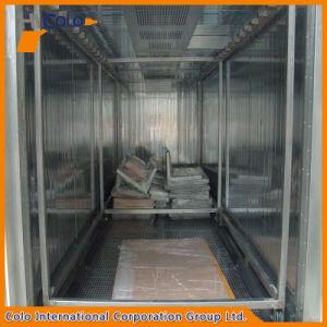 Polvere elettrica in lotti Colo-2915 che cura stufa di secchezza con il carrello