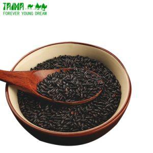 Riz noir violet Oganic de protéines de riz de protéines pour les aliments santé