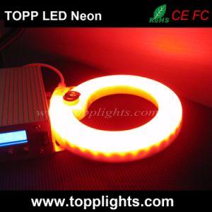 PVC flexible de LED RGB de neón luz para la sustitución de neón de vidrio