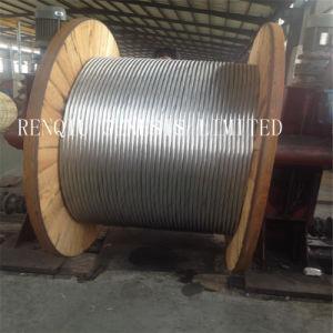 Filo d'acciaio galvanizzato del TUFFO caldo di alta qualità dell'esportazione