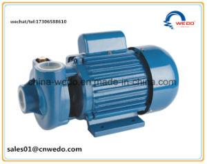 Px201 haute pression de pompe à eau centrifuge (0,55KW/0.75HP)