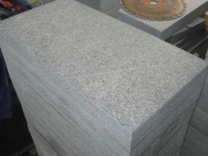 Het goedkope Chinese Graniet van Padang van het Graniet van de Sesam Zwarte G654 Donkere Opgepoetste Grijze voor Tegels/Plakken/Stappen