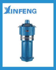 Qd 0.75kw-2 van de Fabrikant van China Pomp de Met duikvermogen van het Water
