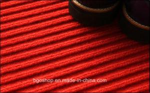 Tapijt van de Fabriek van China het Beste Verkopende Dubbele Gestreepte