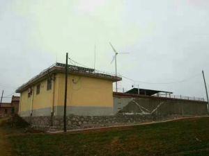 Petit moulin à vent générateur 12V /24V 100W blanc (SHJ-100S)