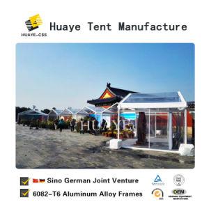 Plantas transparente exterior Mostrar tenda para grandes eventos de exposições