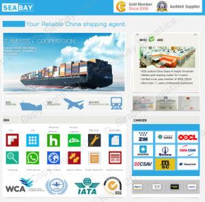 Vollständiges Verkaufs-Verschiffen von China