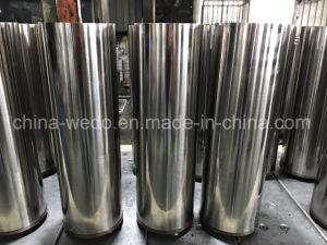 versenkbare Wasser-Pumpe der Qualitäts-6sr18/30