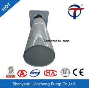Bomba condensada de vários estágios vertical do ferro de molde