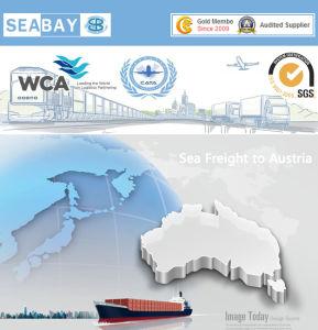 Vracht die Bedrijven China door:sturen aan Australië