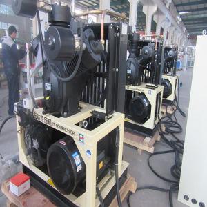 機械を作るプレフォームのブロー形成1literのびん