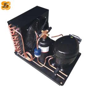 Desconto de grande R410uma unidade de condensação para armazenamento a frio