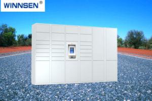 De slimme Elektronische Kast van de Levering van het Pakket van de Kasten van de Opslag van het Pakket van de Kast van de Levering van het Pakket Logistische Intelligente Post