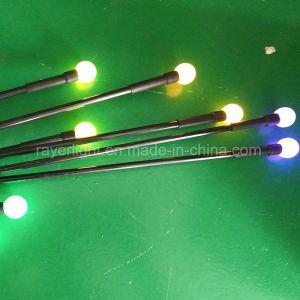党は屋外の芝生の装飾のクリスマスの装飾ライトをつける